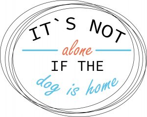 Its not alone if he dog is home